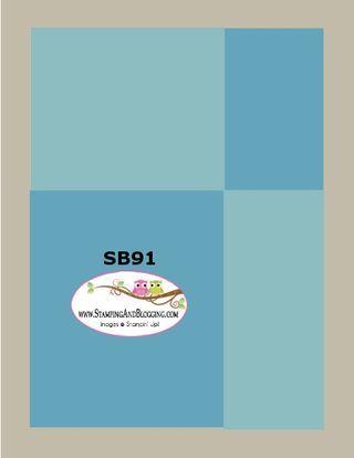 SB 91 Feb 11